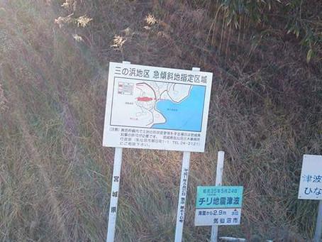 TREE通信 No.3