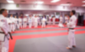 Gracie-Jiu Jitsu-Self-Defense-Athens-MMA-Royce Gracie