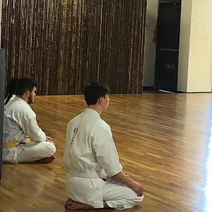 Ryans Shimoji Training (2).JPG