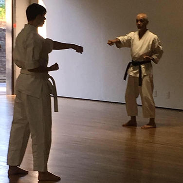 Ryans Shimoji Training (1).JPG