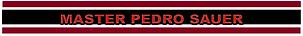 Master Pedro Sauer Banner 001.png