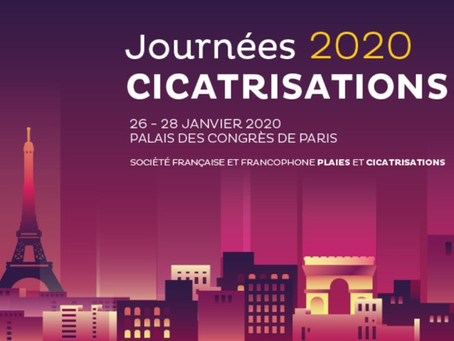 Journées 2020 Cicatrisations