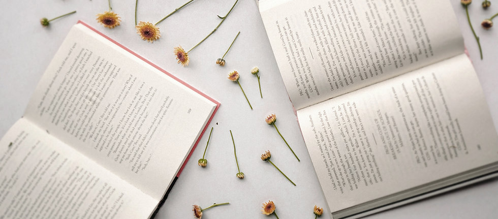 Lifestyle blog slider with books