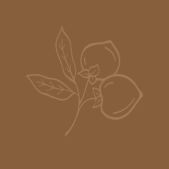 Persimmon Pub logo mark