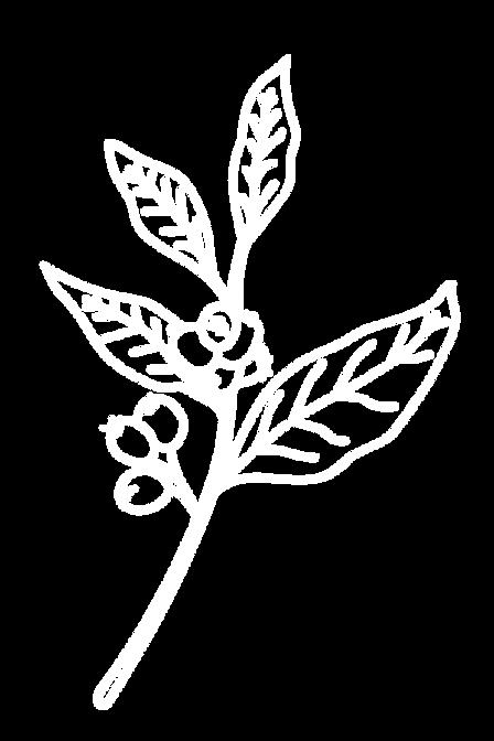 Meridiem submark illustration design
