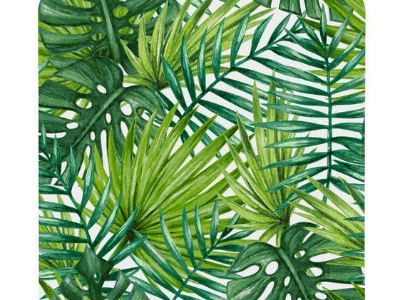 Tropical Palms.png