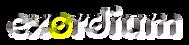 Logo Exordium 2020.png