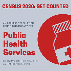 Census_Public_Health (2).png