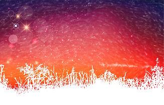 Aurora Background WIX-01.jpg