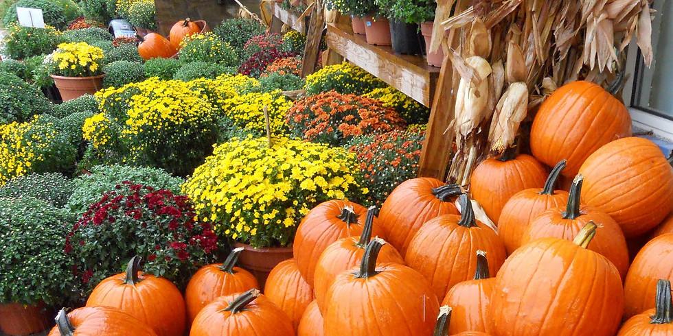 2019 Fall Harvest Fundraiser