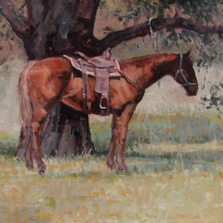 High Tie Horse
