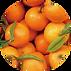 オレンジ油.png