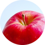 リンゴ.png