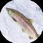 プロテオグリカン.png