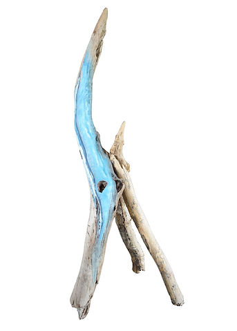 driftwood ...jpg