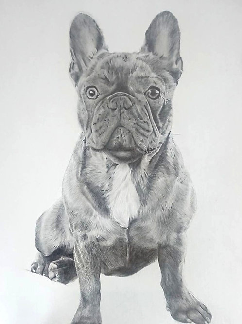 Medium A4 Highly Detailed Pencil Portrait