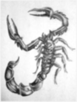 tattoo design - scorpion.jpg