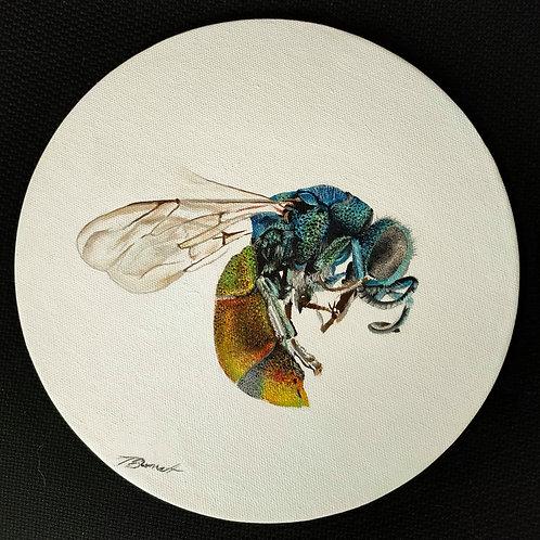 Wasp Original Oil Painting