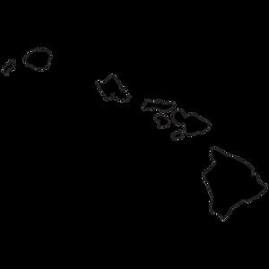 travel-hawaii.png
