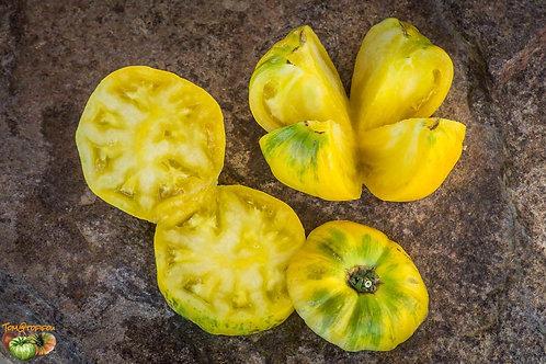 "Plant de Tomate bio ""Beauty Mark"" en godet"