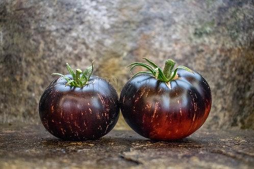 """Plant de Tomate """"Persuasion"""" bio en godet"""