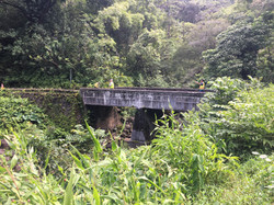 BRIDGE #8: PUOHOKAMOA STREAM BRIDGE