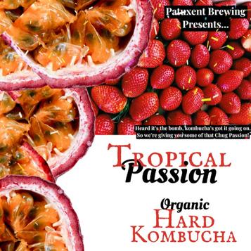 hard kombucha logo.png