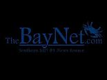 bay net logo.png