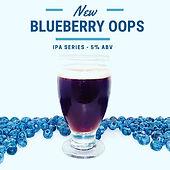 blueberry oops.jpg