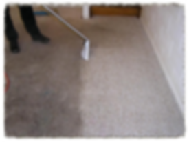 deep carpet cleaning queens ny