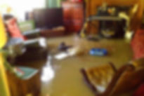 brooklyn carpet cleaning, queens carpet cleaning, New York City carpet cleaning