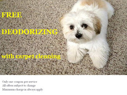 Free Deodorizer