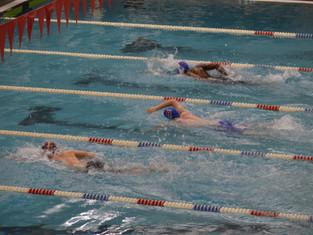 Raiders, Knights, Golden Bears Return To Water In Post Thanksgiving Swim Meet