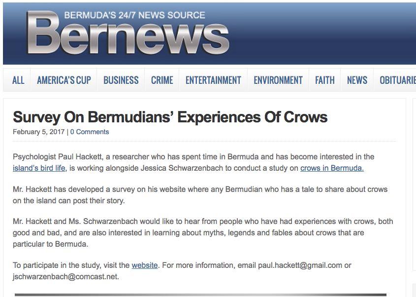 Bernews ad