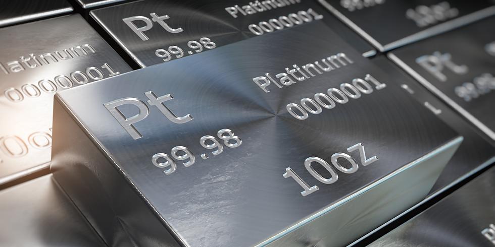 Scenario Forecasts for Platinum Group Metals (Morning session)