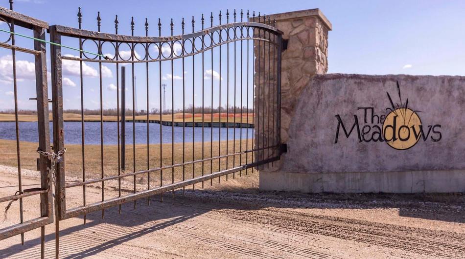 Meadows Gate.jpg