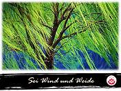 Living Do-Blog Sei Wind und Weide