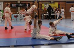 Jiu-Jitsu Masters 2014