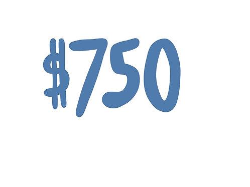 $750 Donation