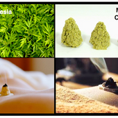 Moxibustion-moxa-cones.png