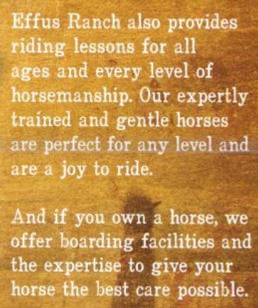 Horse Riding, trail riding, Trail rides, equestrian, boarding, phoenix, wickenburg,