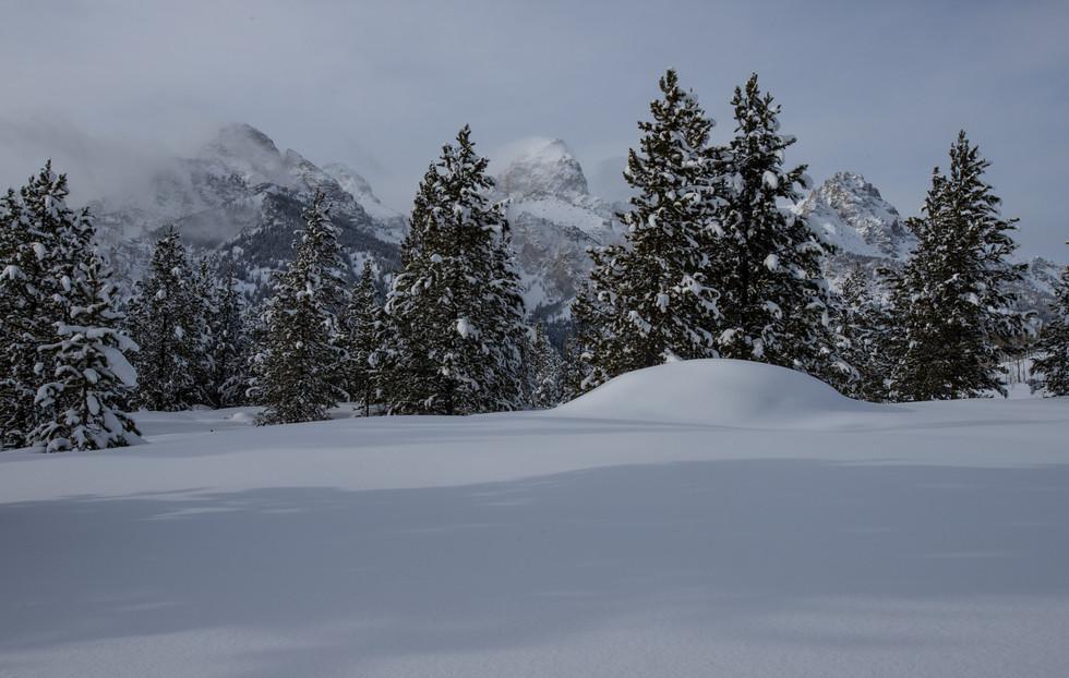 GTNP taggart winter.jpg