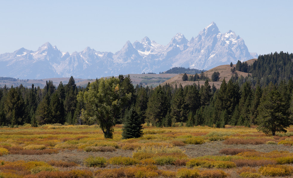 Teton Range From Moran