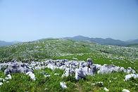 秋吉台國定公園