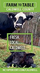 caldwell brochure thumbnail.png