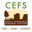 cefs-logo.png