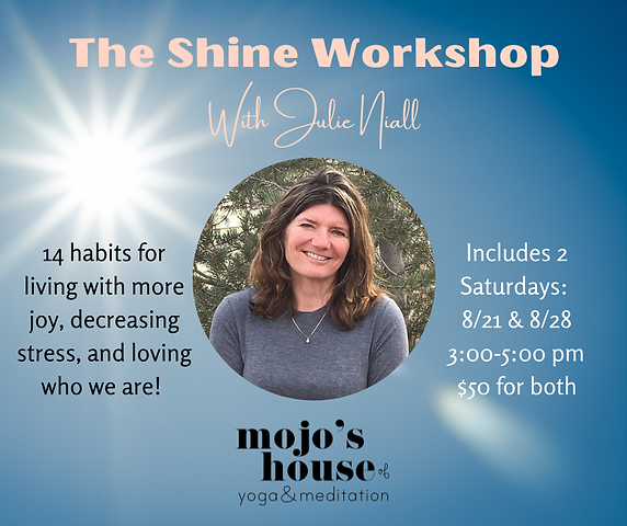 The Shine Workshop 14 habits for living with more joy, decreasing stress, and loving who w