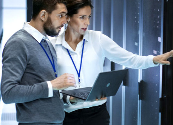 A Manager's Guide to Information Technology