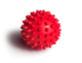 Andrew - Spiky Massage Ball.png