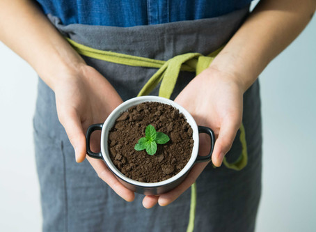 What Is Greenwashing And How To Avoid It